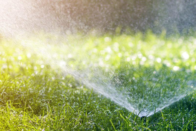 Rasenbewaesserung_im_Herbst_Firma_Raintime_Bewaesserungssysteme