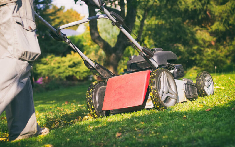 Rasenpflege-Tipps-fuer-den-Herbst-Raintime-Bewaesserungssystemex